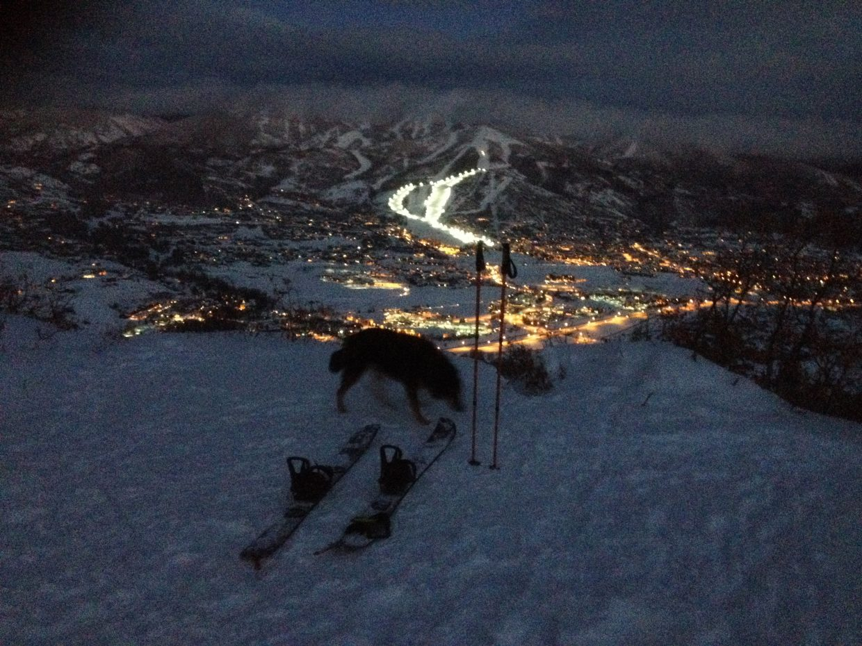 Taken from the top of Emerald Mountain on the evening of Jan. 1. It was my second split-board ascent and the first one with my dog Irie. Submitted by: Hunter Ogden