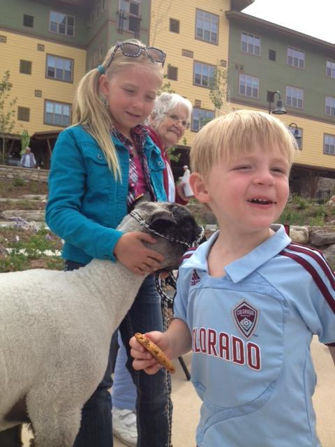 Grand kids enjoying the petting zoo. Submitted by: Kelly Ornberg