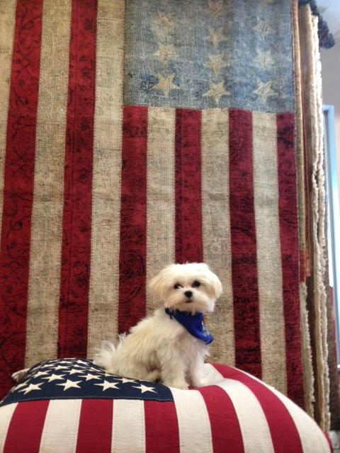 This is Polie from Olivia's Home Furnishings saying Happy 4th July. Submitted by: Kathy Wichelhaus