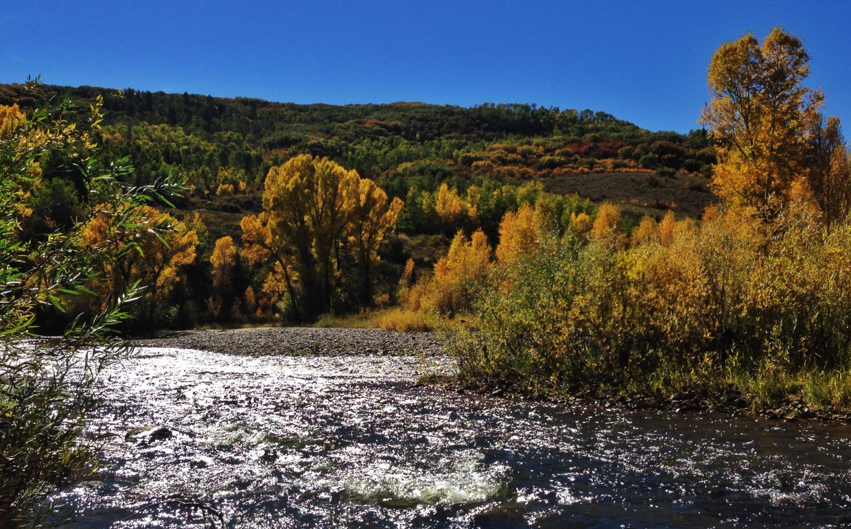 Fall colors. Submitted by: Chris Lanham