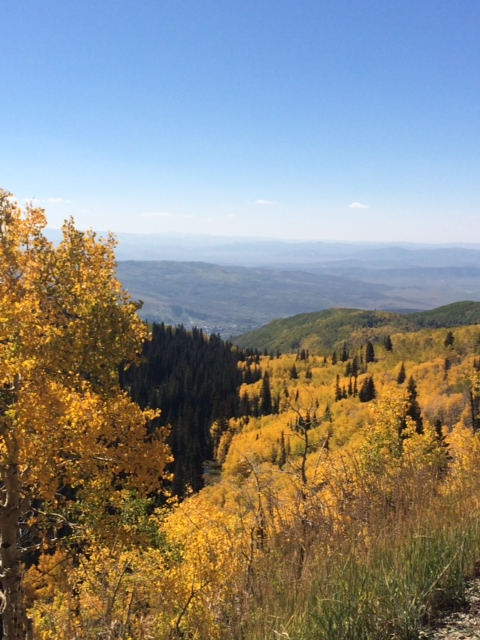 View of town from Buff Pass. Submitted by: Wendy Allen