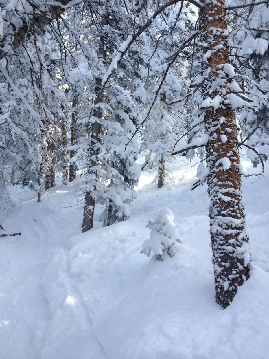 A day of skiing on the mountain. Submitted by: Cody Miles
