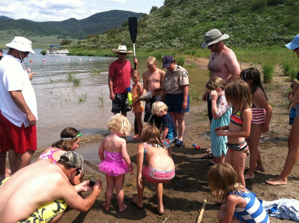 Take the kids out hunting for crawdads.