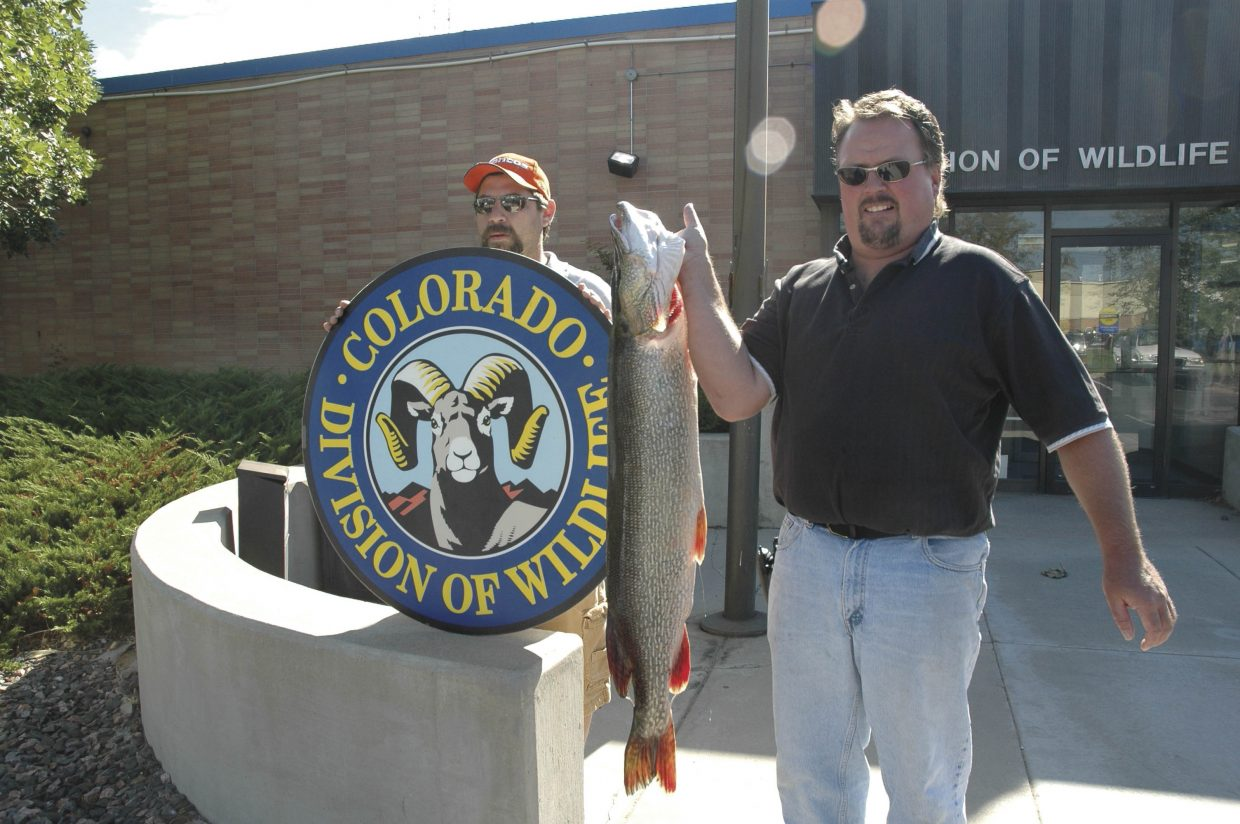 Thornton's Tim Bone holds a 30-pound, 11-ounce pike outside the Denver Headquarters of the Colorado Division of Wildlife, where it was officially weighed. Bone caught it in Stagecoach Reservoir on Aug. 5, 2006. (Courtesy photo)