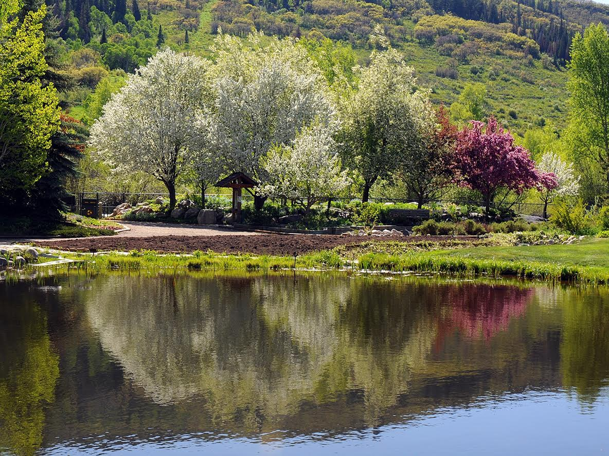 Yampa River Botanic Park. Submitted by Jeff Hall.