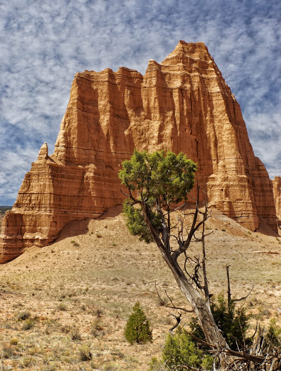 Avoiding the mud: Cathedral Valley, Capitol Reef National Park. Submitted by Joe Turner.