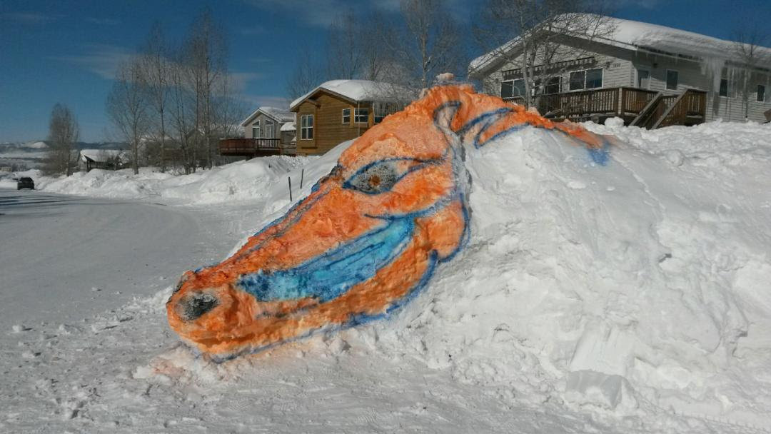 """Go Broncos."" Submitted by Erin Torello."
