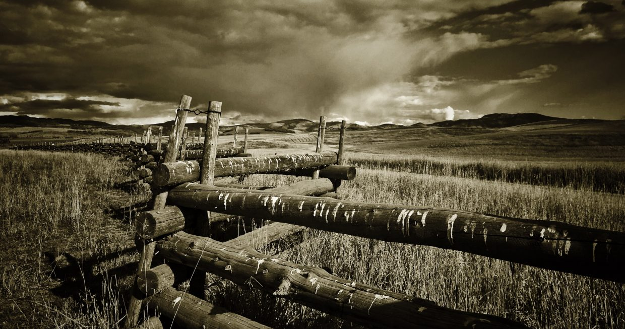 Routt County fenceline. Submitted by: Chris Lanham.