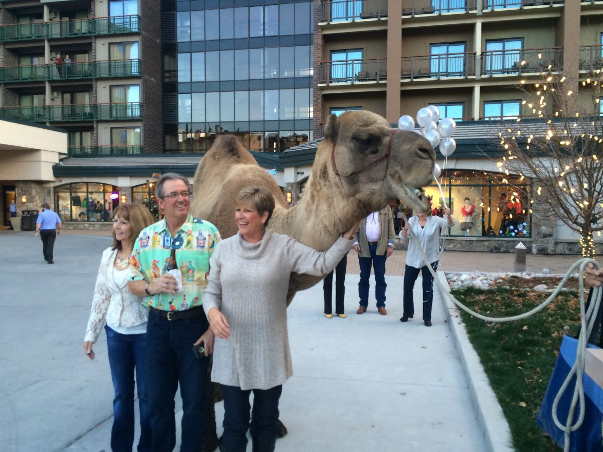 "Larry the Camel says ""Happy 60th to Alice Klauzer, Debbie Aragon and Lynn Marr!"" Submitted by: Diana Eubank."