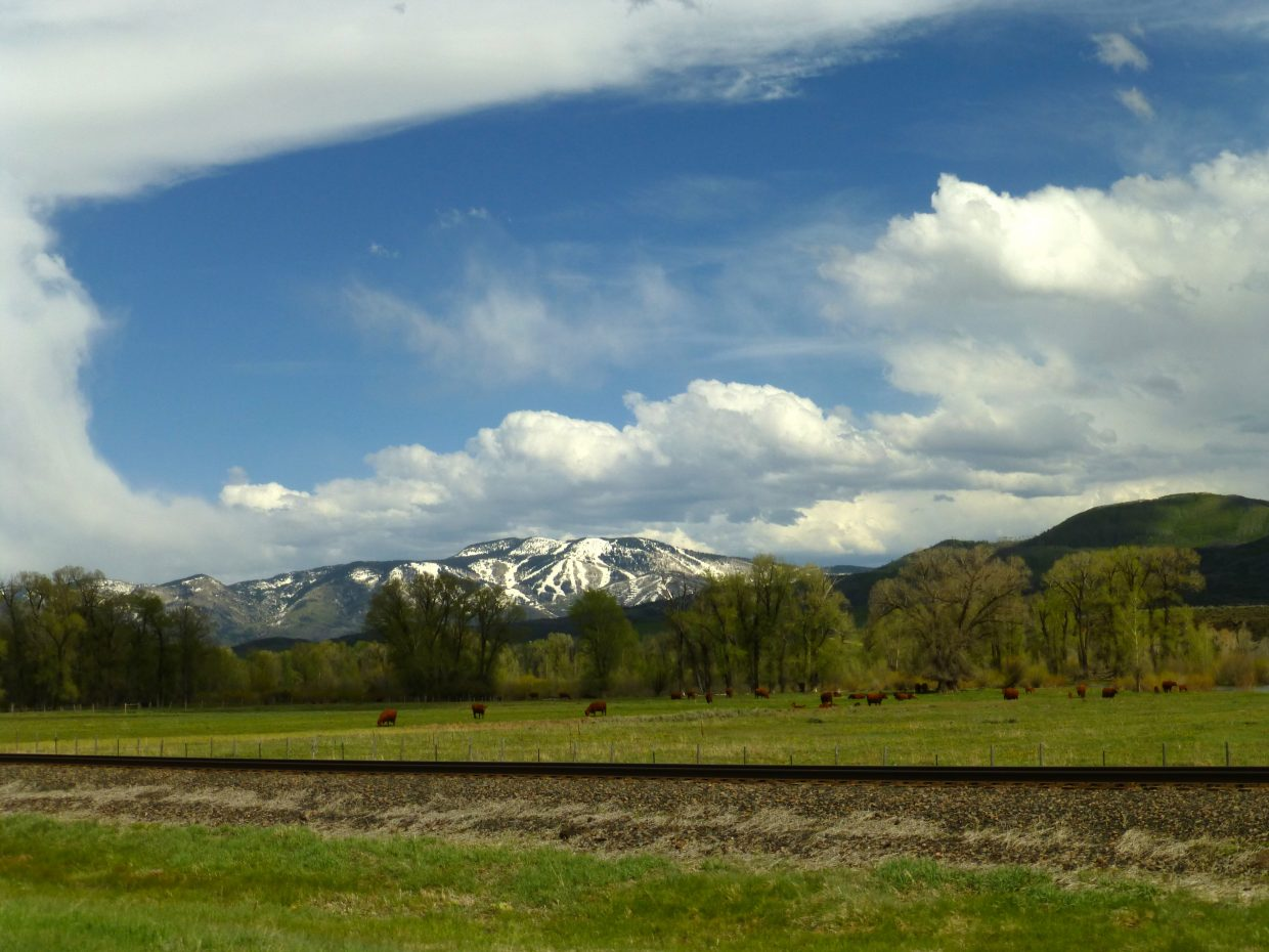 Pics from our drive back from Browns Park and Craig today. Submitted by: Gail Hanley
