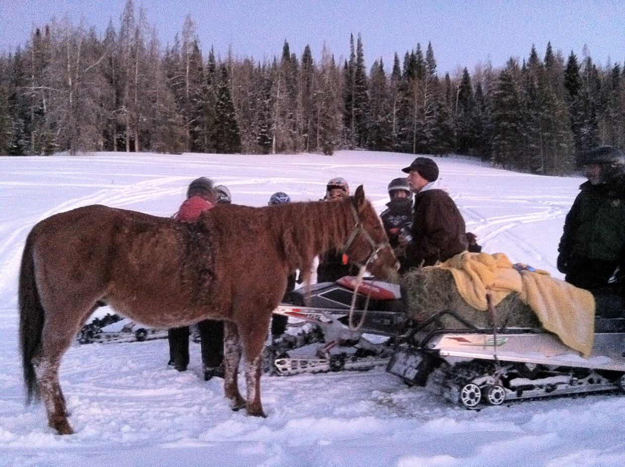 A group of snowmobilers, Forest Service officers, a local veterinarian and his fiancee spent several hours Sunday afternoon walking a lost horse eight miles out of the North Routt backcountry.