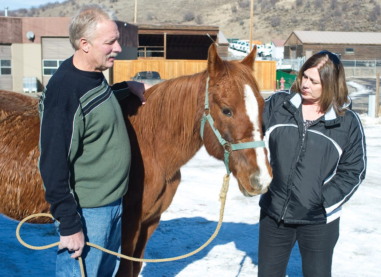 Veterinarian Mike Gotchey and Mary Sue Sorenson visit with Ser Vivor at the Steamboat Veterinary Hospital on Tuesday afternoon. Ser Vivor was rescued from the North Routt backcountry Sunday and is thought to have spent four months in the wilderness before being spotted by a group of snowmobilers that was riding in the area.