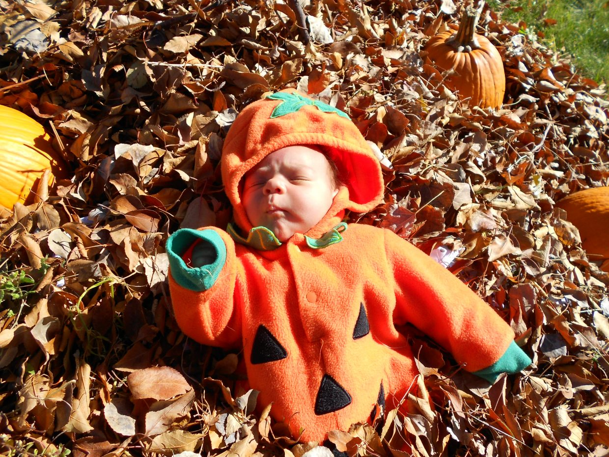 Pumpkin patch baby. Submitted by: Maryedith Davies
