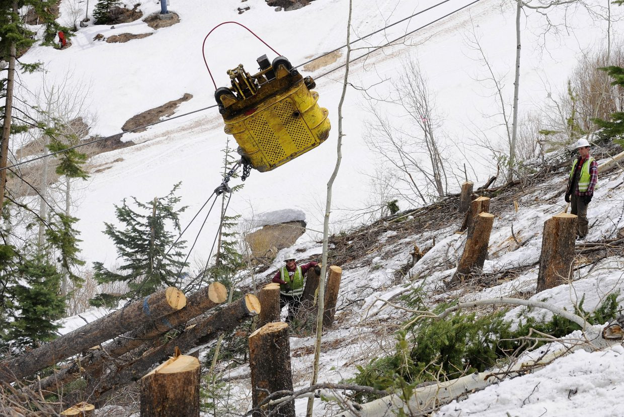 Lodgepole pine trees killed by the pine beetle are removed in May from Steamboat Ski Area. Of Routt County's 1 million acres of forest, a survey showed that an additional 13,000 acres of forest were impacted by the pine beetle in 2011.
