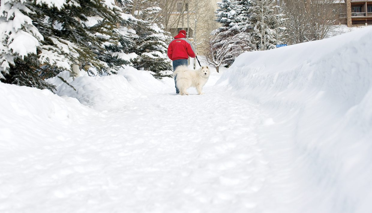 Larry Nemerever walks his dog Samantha through the high banks of snow along Whistler Road on Monday afternoon in Steamboat Springs.