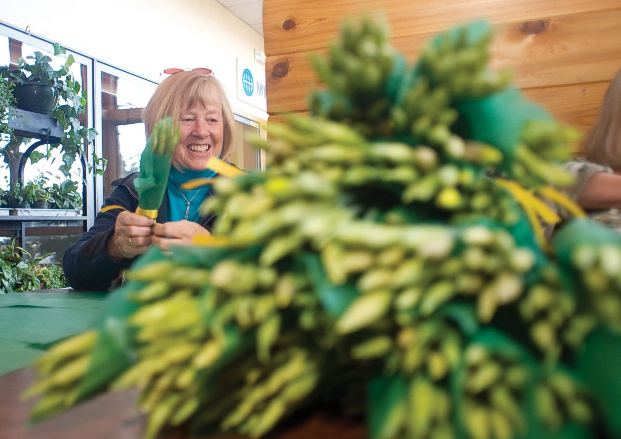 Volunteer Barb Ross wraps daffodils Monday morning at Alpine Floral & Atrium in Steamboat Springs. The daffodils will be on sale for $5 a bunch as part of the Heralds of Hope fundraiser for hospice. Bunches can be purchased from the Northwest Colorado Visiting Nurse Association, Alpine Floral & Atrium, Ace at the Curve, Hayden Mercantile, Bonfiglio Drug, The Clark Store, as well as the City Market and Safeway stores in Steamboat Springs and Craig from Heralds of Hope volunteers.