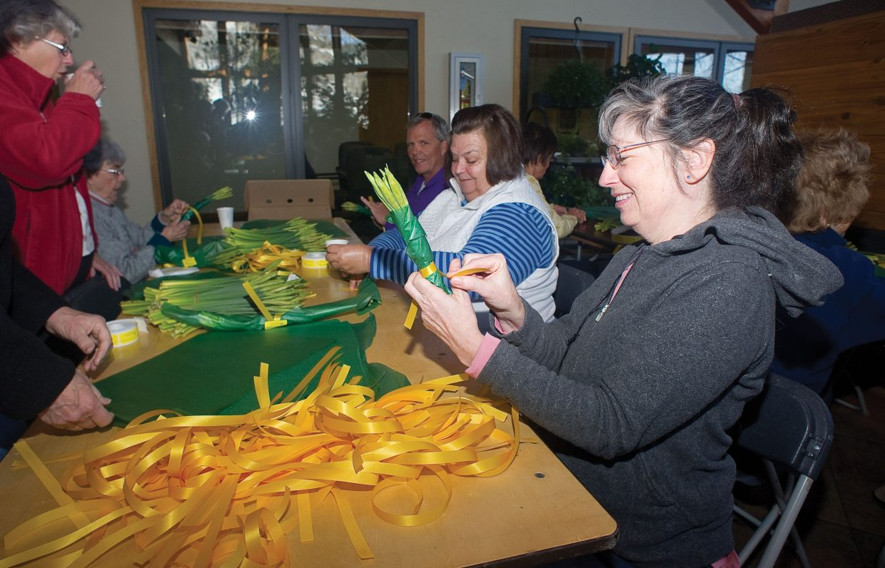 Volunteer Suzy Patillo wraps daffodils Monday morning at Alpine Floral & Atrium in Steamboat Springs. The daffodils, which will be on sale for $5 a bunch, is part of the Heralds of Hope fundraiser for hospice.