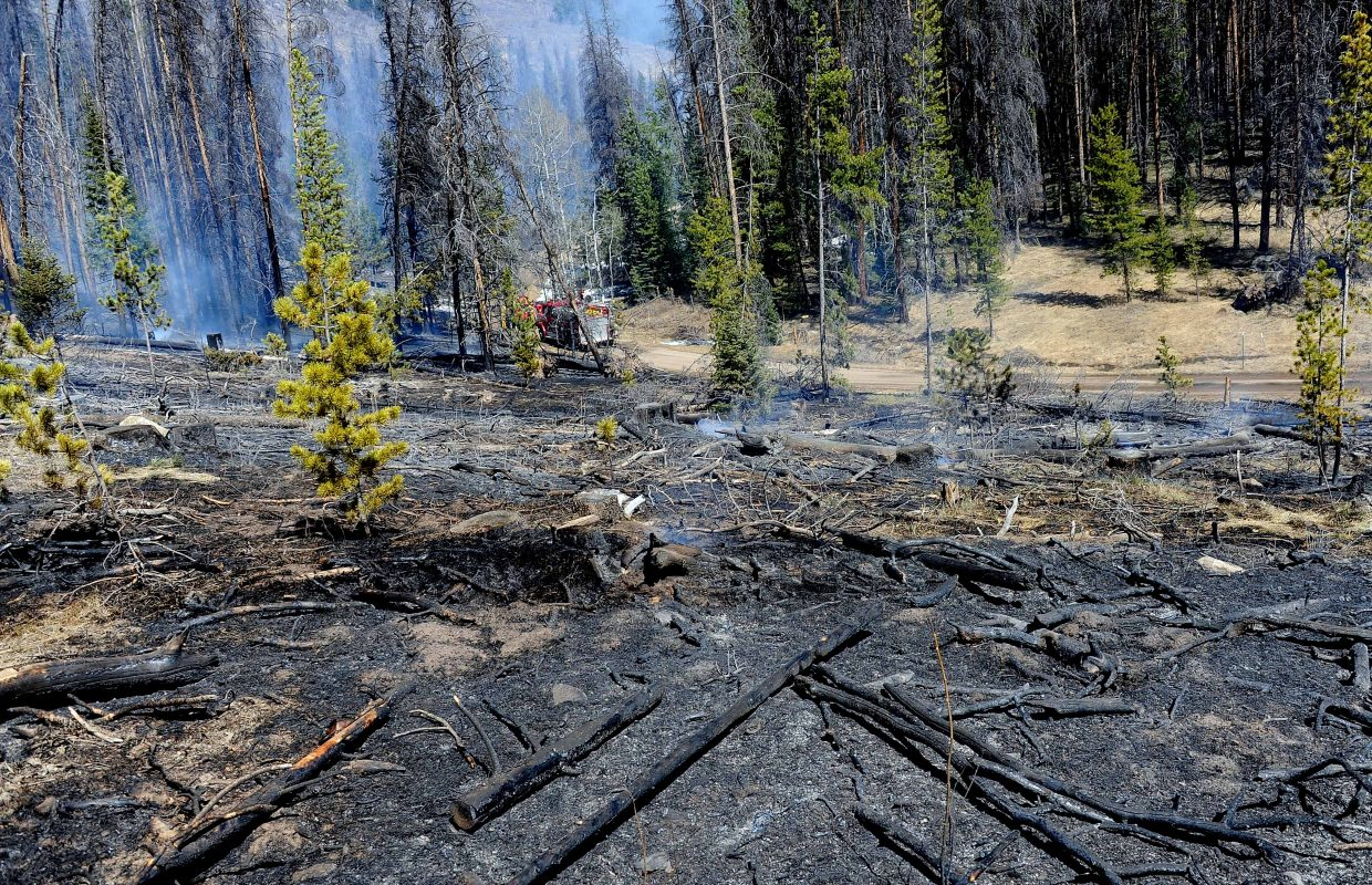 A downed power line sparked a small fire in south Routt County. Crews from four different area departments rushed to put it out.
