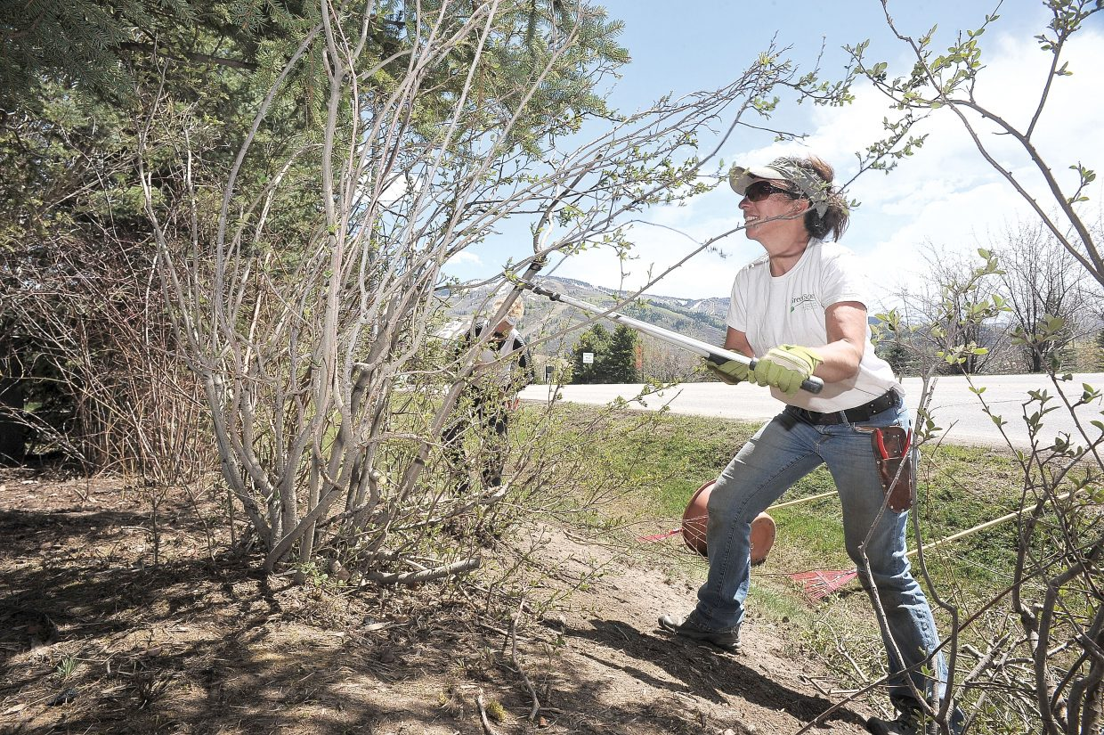 Charmayne McElhiney, of Green Scenes LLC, cleans up the landscape in front of Vectra Bank on Tuesday morning in Steamboat Springs. Landscaping companies have been busy thanks to the warm spring and early melt-off in the area.