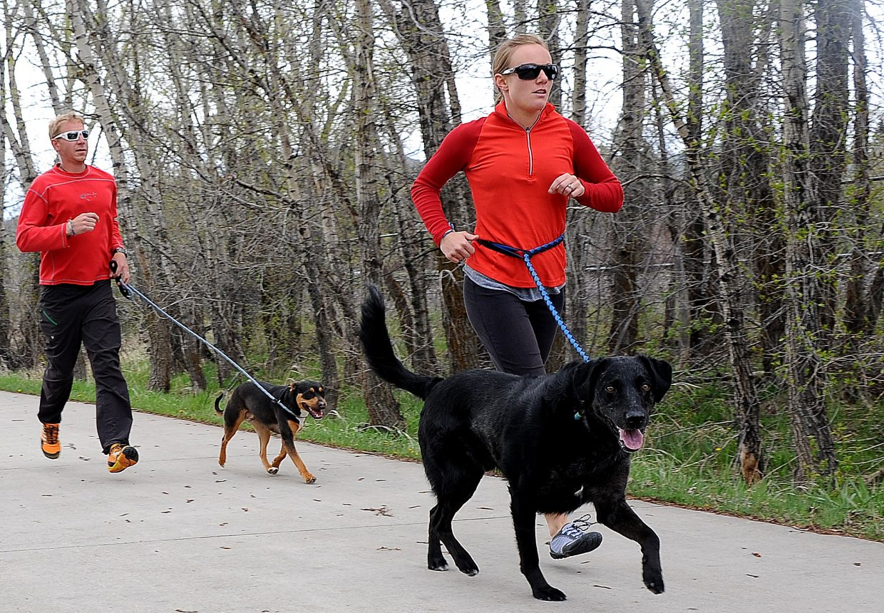 Erin Taylor and dog Brody and Chris Taylor and Dee jog along the Yampa River Core Trail on Wednesday afternoon in Steamboat Springs. Runners of all types will take to the roads and trails this summer for the Steamboat Springs Running Series, which kicks off its season in about nine days with the Spirit Challenge.