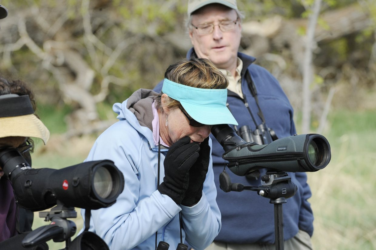 Eva Gibbon reacts to seeing great blue herons.