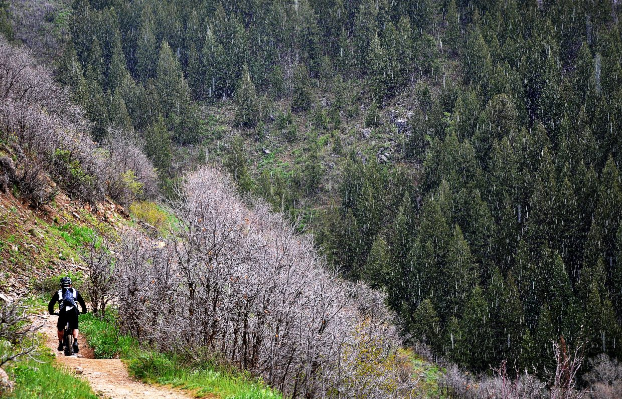 A biker starts the climb up the Mad Creek trail Saturday despite a light hail and approaching thunderstorms.