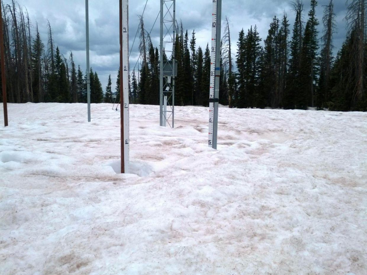 Nick Bencke, of the U.S. Forest Service, visited the summit of Buffalo Pass on Tuesday, and his photograph of the Tower measuring site confirmed 60 inches of standing snow at 10,700 feet elevation.
