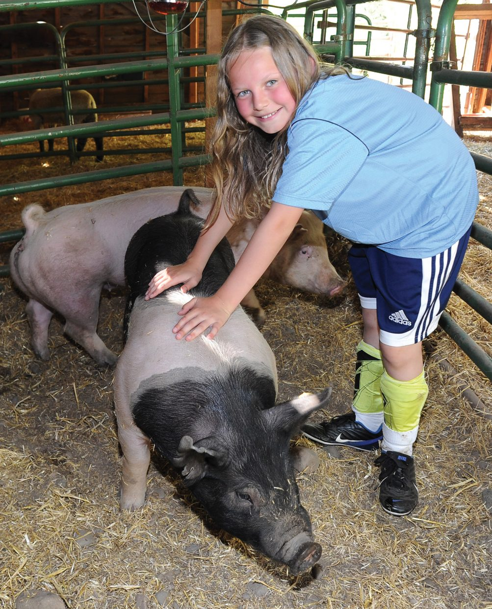 Anna Dean takes care of her pigs in a barn at the Legacy Ranch. Some 4-H members who live in the city and don't have a place for a livestock animal use the facilities at Legacy Ranch.