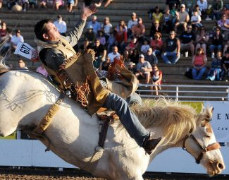 Chutes at Brent Romick arena to fly open Friday as Steamboat Pro Rodeo series begins run