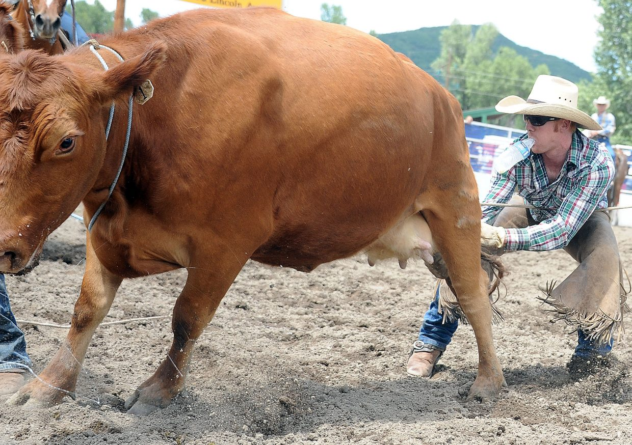 Whit Gates tries to get milk from a cow into his bottle Sunday during the ranch rodeo in Steamboat Springs.