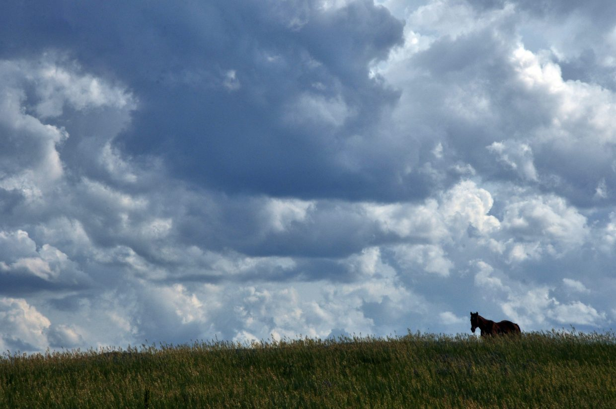 A horse grazes under cloudy skies Friday south of Steamboat Springs. Weather forecasters are calling for another mostly sunny, warm week in the Yampa Valley.