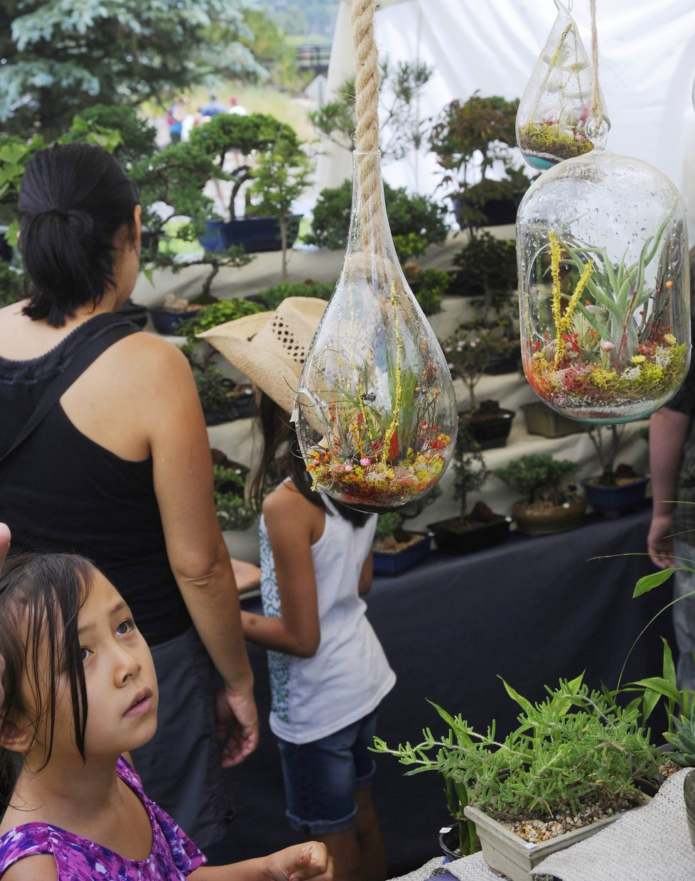 Julia Savidge, 7, of Boulder, looks at an air plant on display at an Art in the Park booth Saturday.