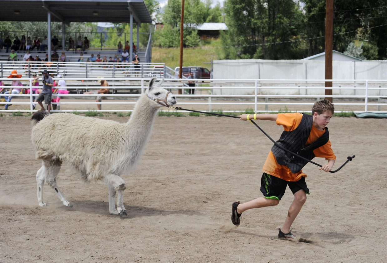 Eric Casey, 12, pulls a llama during the Routt County Redneck Olympics on Saturday at the Routt County Fairgrounds in Hayden.