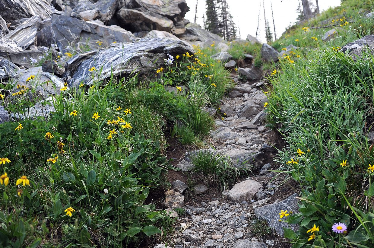 Boulders and rocks litter the trail on the way to Mica Lake.