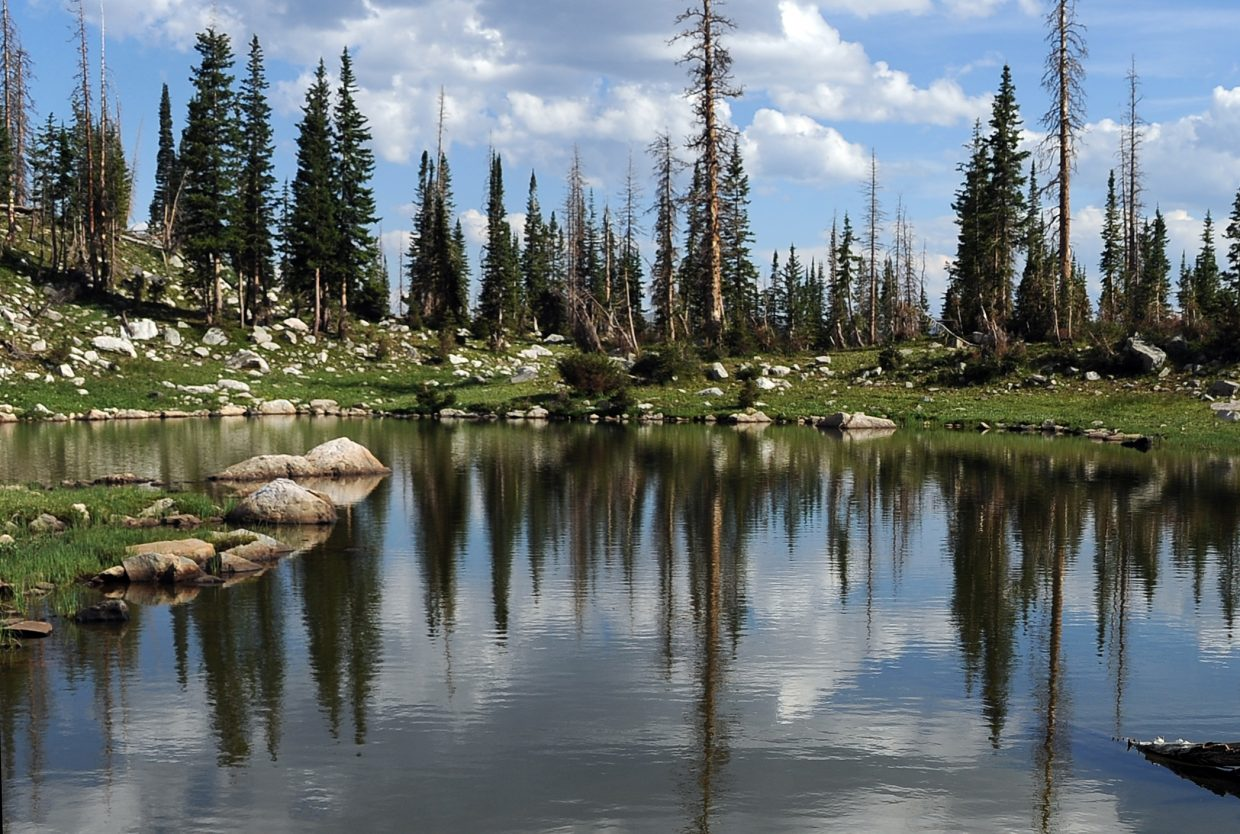Trees are reflected in Mica Lake.