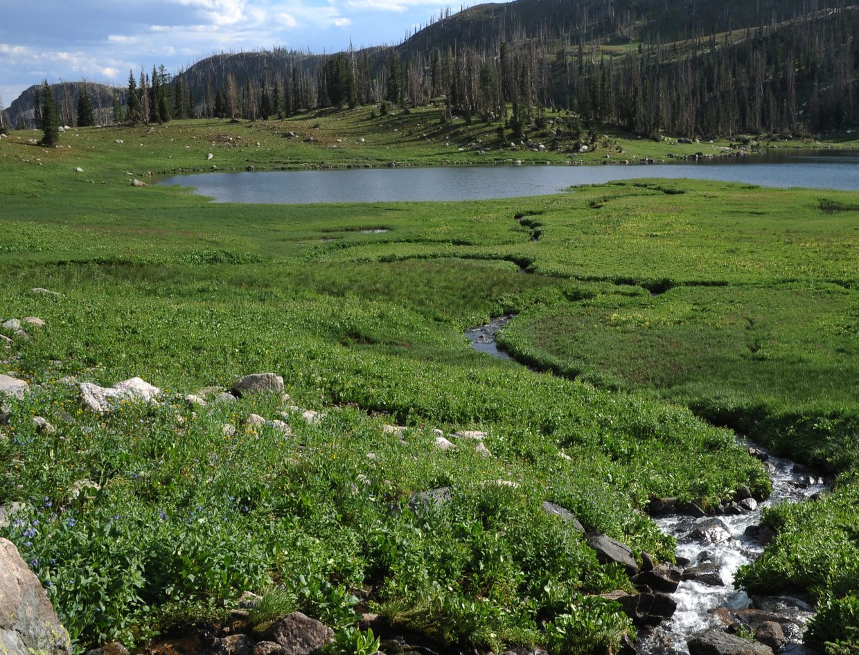 Water pours into Mica Lake from a handful of streams, rolling down from nearby mountains.