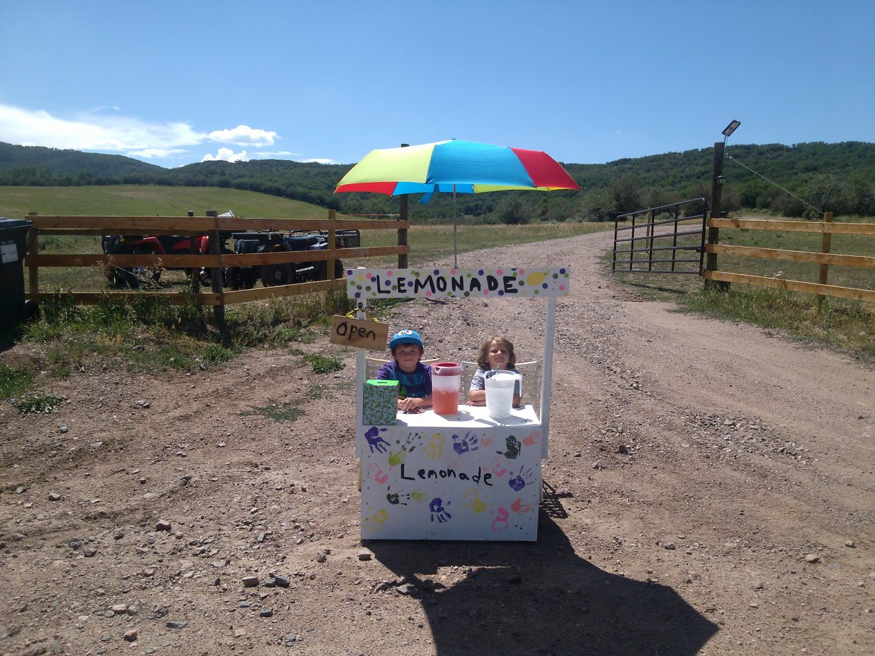 Lemonade stand. Submitted by: Toria Kuntz