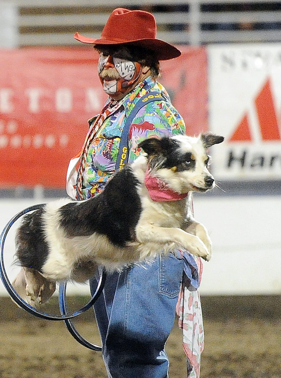 Bert Davis and his dogs perform during Friday night's Steamboat Springs Pro Rodeo Series performance.