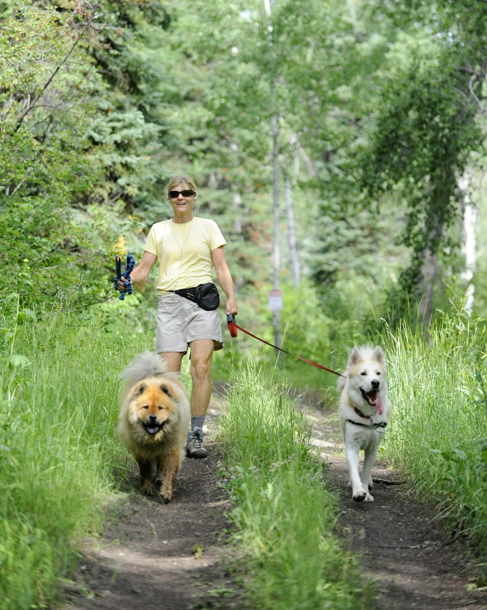 Sue Swain walks down Agate Creek Trail Wednesday morning with Nika, left, and Berkeley. Swain, who lives in the nearby Agate Creek Preserve, said she rarely sees other hikers in the area that's the subject of ongoing litigation between the city of Steamboat Springs and Humble Ventures.