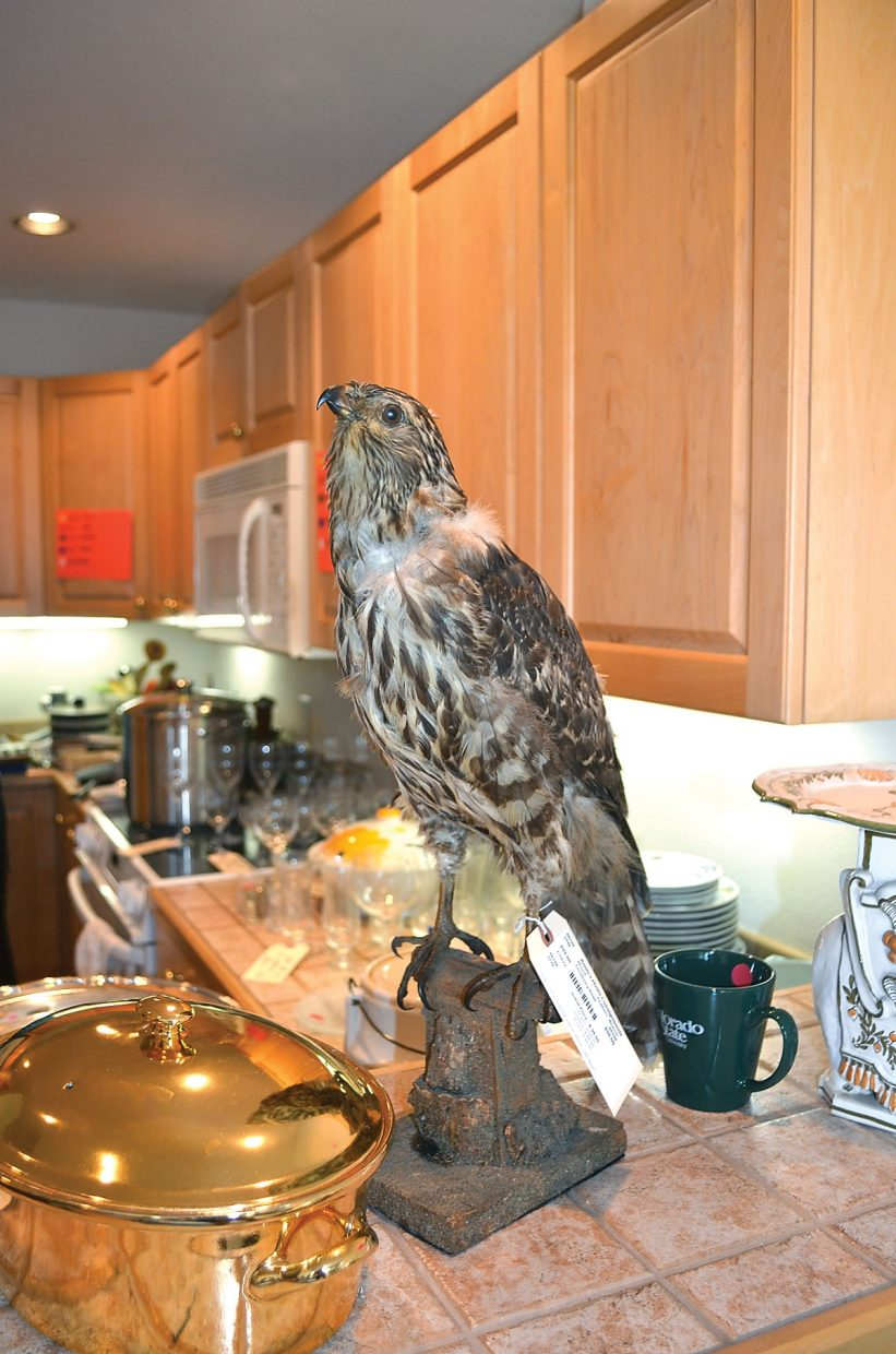 A mounted hawk specimen was among the most unusual items at the estate sale.