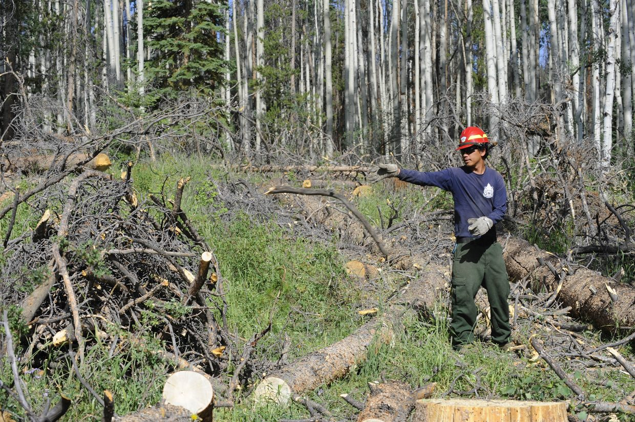 U.S. Navy veteran Toua Vang throws wood onto a burn pile at a work site in the Routt National Forest near Stagecoach. Vang is part of a Veterans Fire Corps crew operated by the Student Conservation Association. The program aims to give veterans skills that they can use to land jobs.