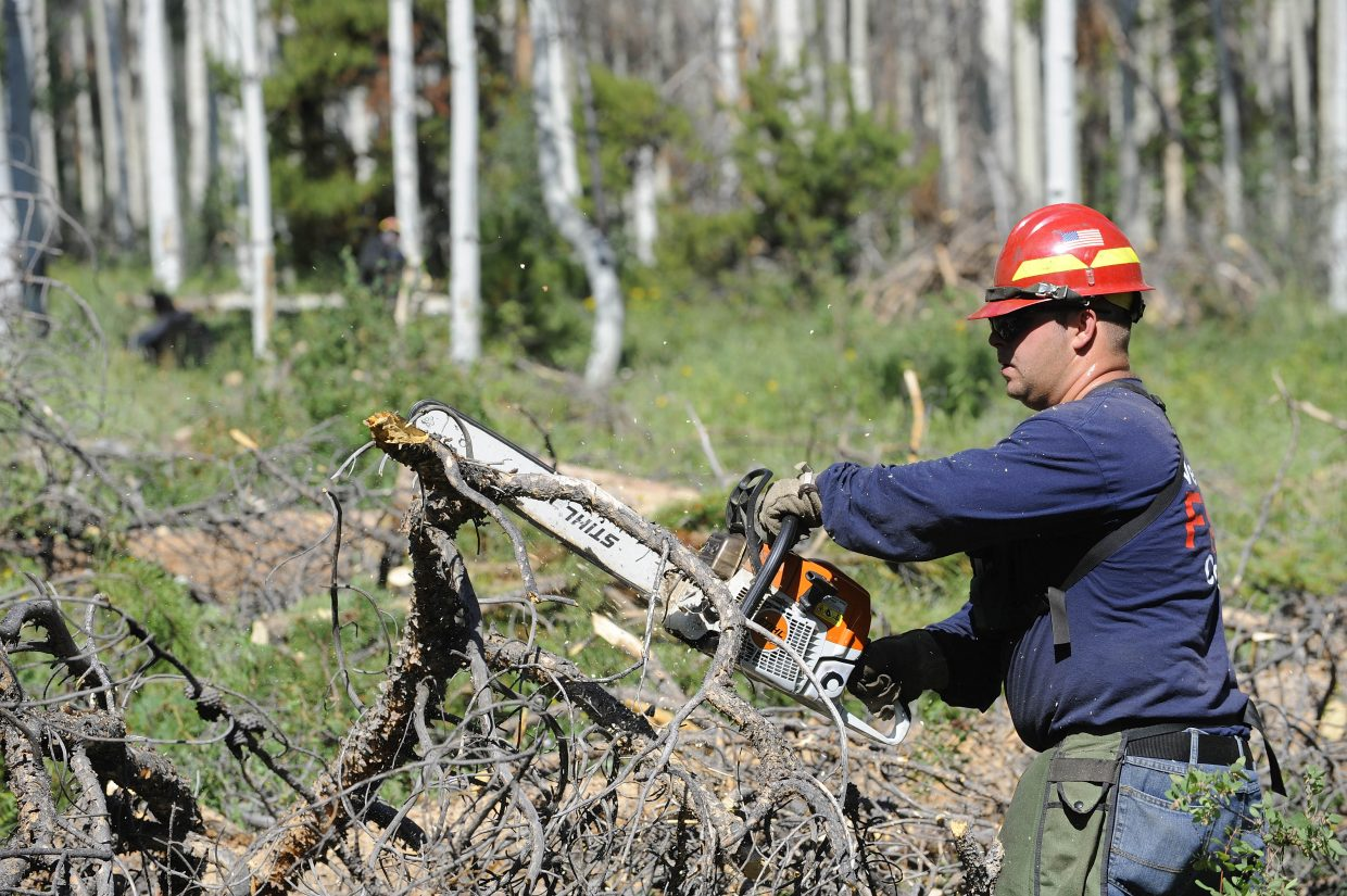 U.S. Army veteran Elder Pyatt uses a chain saw Tuesday while working with his Veterans Fire Corps crew near Stagecoach.