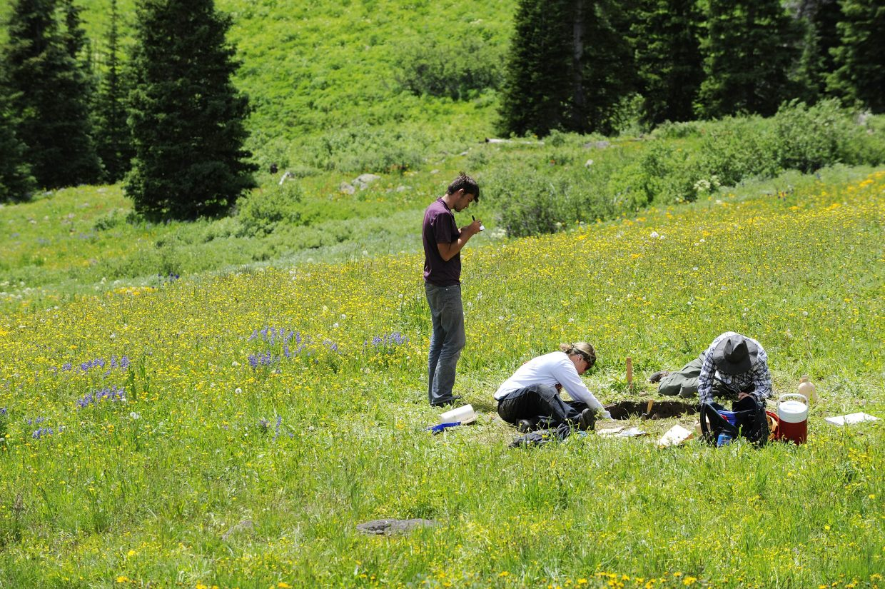 About a dozen people took part in the archaeological excavation at the edge of the Flat Tops Wilderness Area.