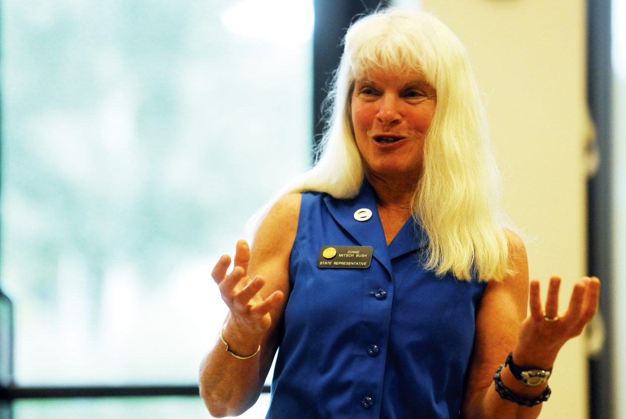 Rep. Diane Mitsch Bush spoke Sunday in Steamboat Springs about her first session in the Colorado Legislature.