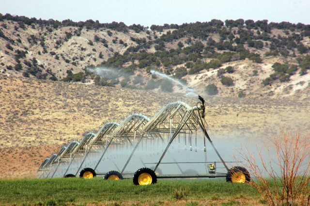 A farmer west of Maybell uses large, rolling sprinkler systems - or circle pivots - to efficiently water his crops.
