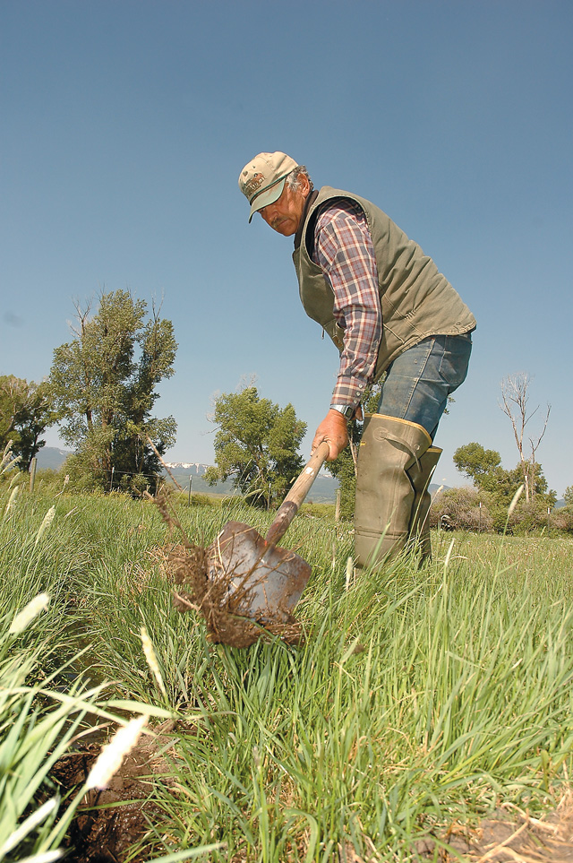 Dean Rossi clears an irrigation ditch used to spread water across a hayfield on his land between Phippsburg and Yampa. The ditch carries water from the Yampa River.