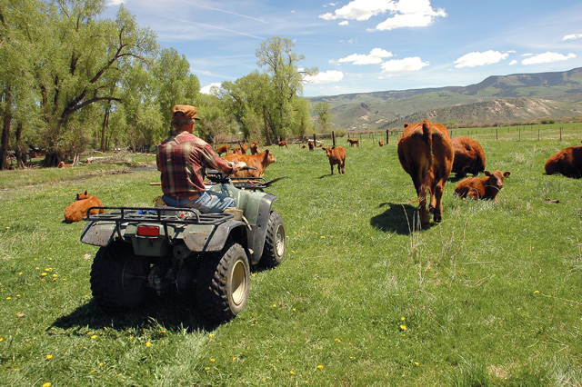 South Routt rancher Dick Palmer returns from checking irrigation ditches on his 1,200-acre ranch outside Yampa.