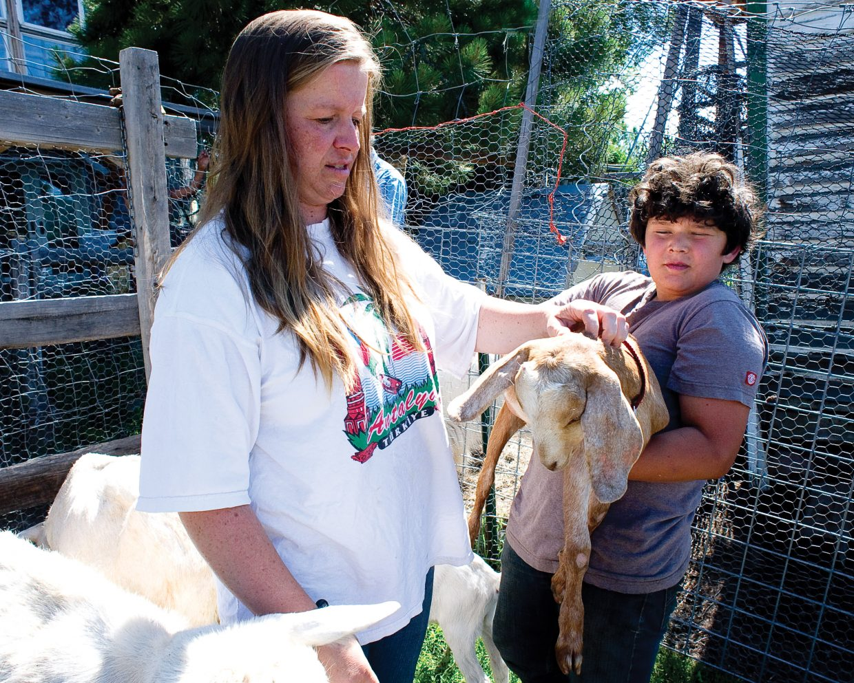 Holly Fielding and her son Joey Shirley check out one of the goats on their downtown property Holly owns with her husband, John. The Steamboat Springs City Council will consider the first reading of an ordinance that would allow goats in city limits.
