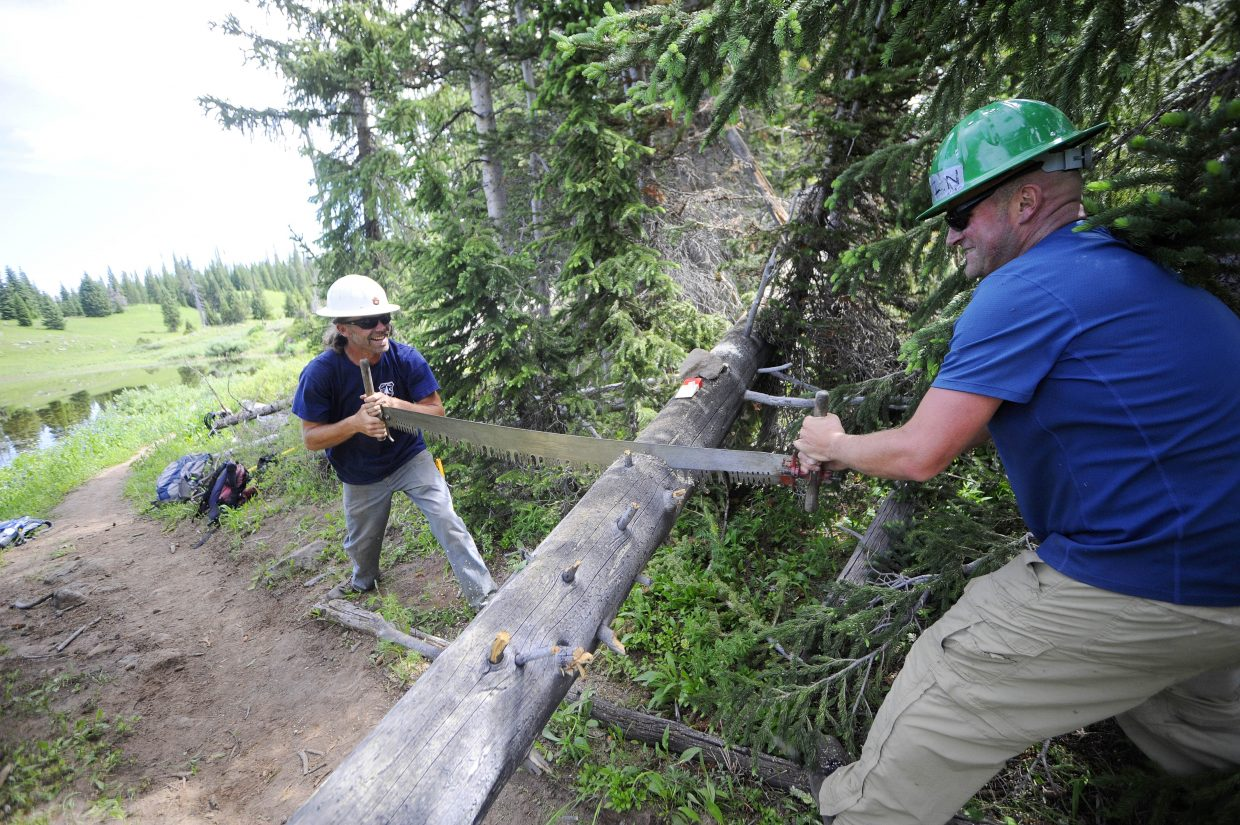 Yampa Ranger District backcountry trail crew member Justin Benson, left, and crew leader Scott Livingston use the cross-cut saw to cut through a spruce tree likely killed by the beetle epidemic in the 1940s.