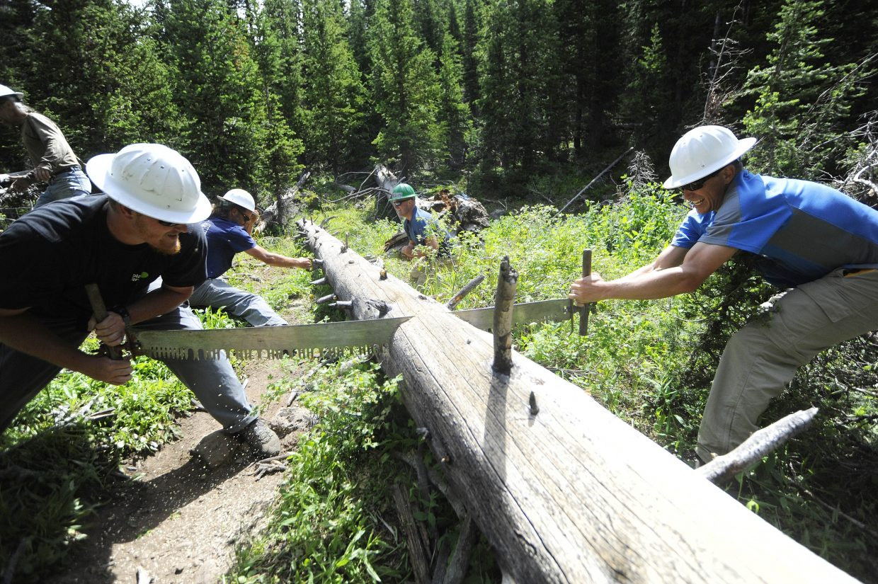 Yampa Ranger District backcountry trail crew members, from right, Neal Obray, Scott Livingston, Justin Benson and Bryan Howell have a competition to see what saw will cut through a downed tree the fastest.